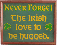Never Forget The Irish love to be hugged Framed Sign